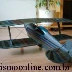 Aeromodelo Christen Eagle