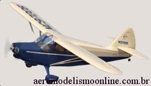 Aeromodelo Treinador Yard Bird